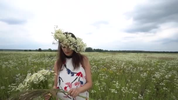 Těhotná žena trhá heřmánek květiny.