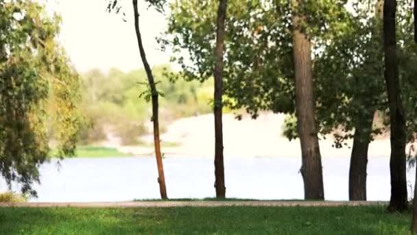 Windblowing stromy pozadí řeka