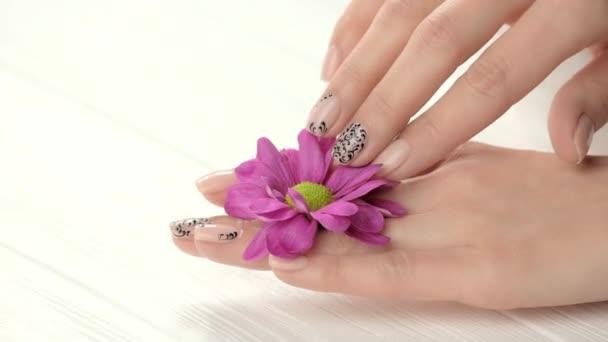 Pěstěné ruce dotýkají jemný chryzantéma