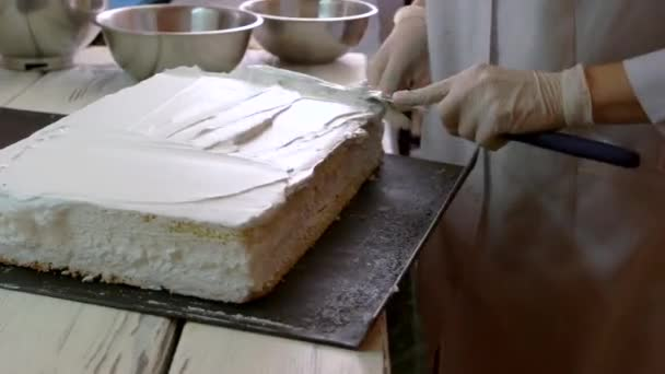Woman frosting a cake at professional bakery.