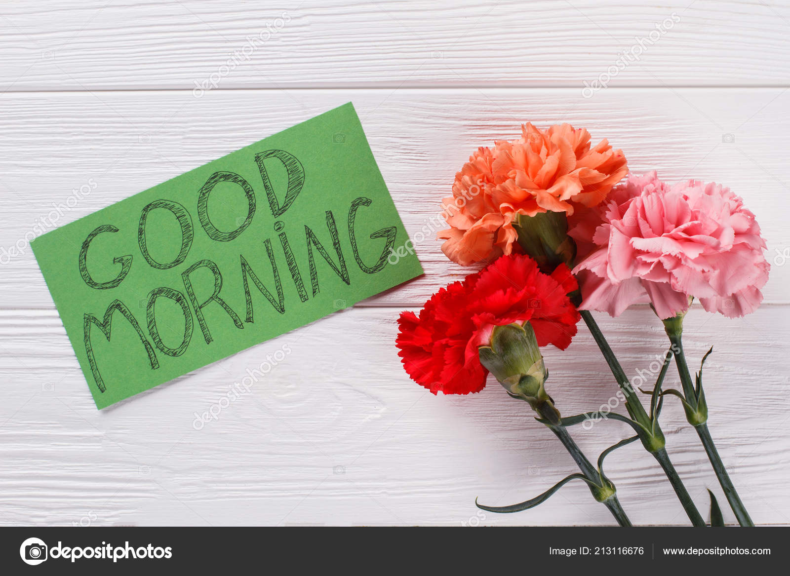 Good Morning Wish Note And Colorful Carnation Flowers Stock Photo