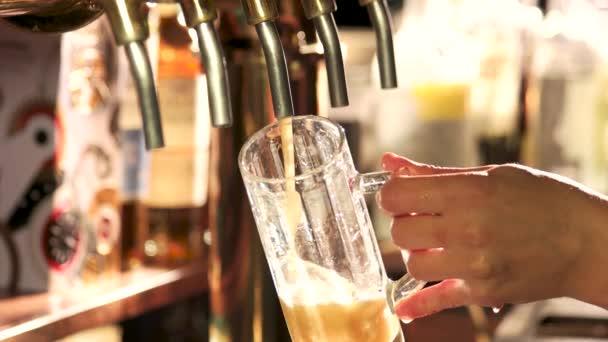 Csapos ömlött pohár csapolt sör.