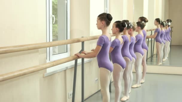 Ballerinas performing ballet exercise at barre.