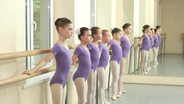 Group of children at a lesson of ballet.