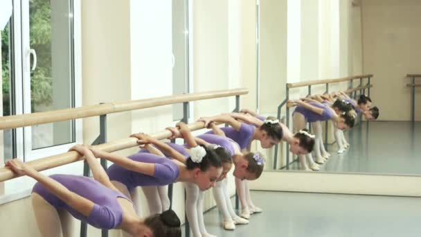 Little ballerinas stretching at barre.