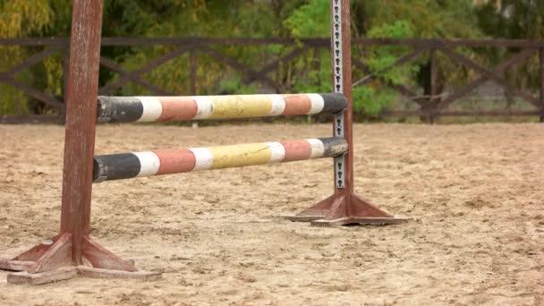 Close up horse jumping over hurdle.