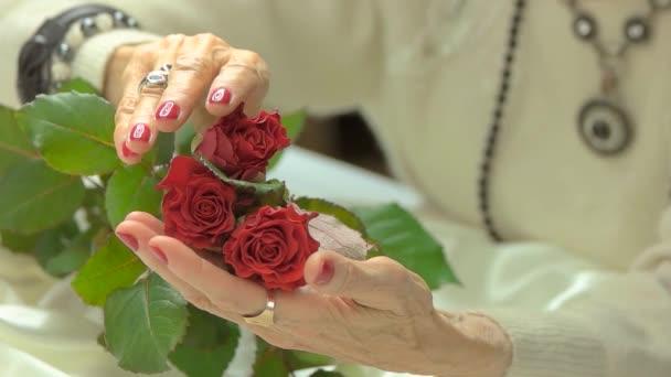 Luxusní růže v pěstěné ruce, pomalý pohyb.