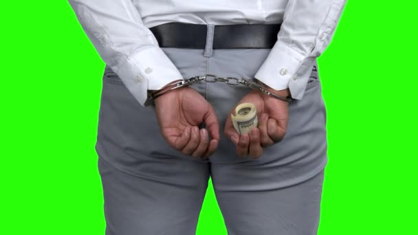 Businessman in handcuffs holding money, back view.