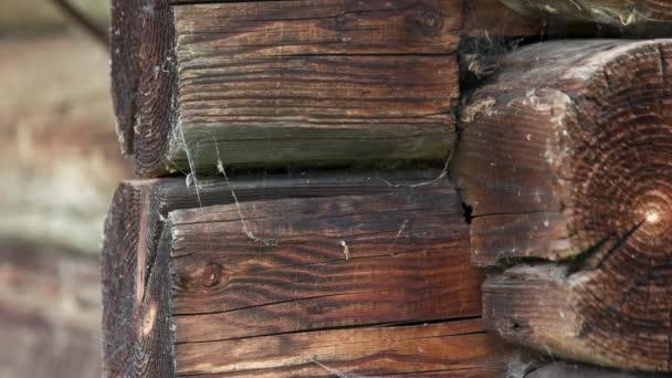 Stará dřevěná kláda pozadí.