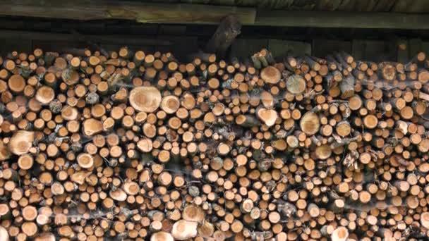 Skládaná dřevěná hromada ve stodole.