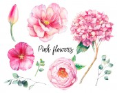 Ručně malované květinové prvky nastavena. Akvarel Botanická ilustrace Tulipán, pivoňka, květy hortenzie a eucalyptus listy. Přírodní objekty izolovaných na bílém pozadí