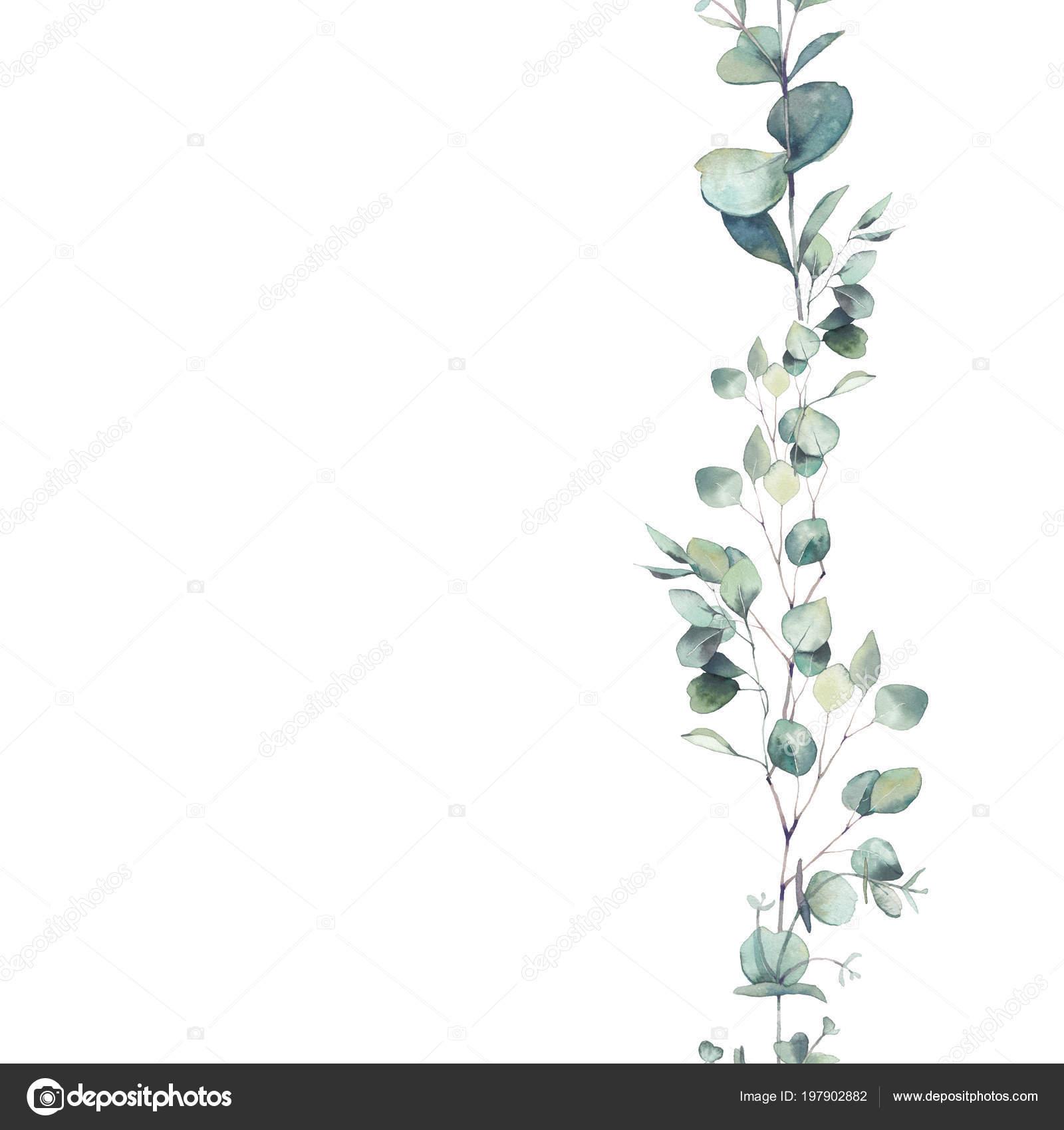 aquarell eukalyptus zweige ornament hand bemalt sich. Black Bedroom Furniture Sets. Home Design Ideas