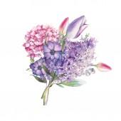 Ručně malované květinové kompozice. Akvarelu Botanická ilustrace Tulipán, sasanky, hortenzie květy a listy kytici. Přírodní dekorativní objekt izolované na bílém pozadí