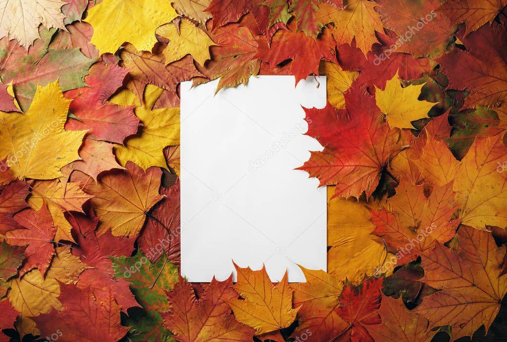 Letterhead, autumn foliage