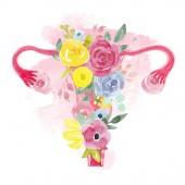 Děloha ženy s květinami ilustrace