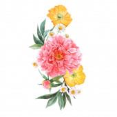 Krásná květinová kytice s akvarelem růžová pivoňka a žluté mák květiny. Stock illustration