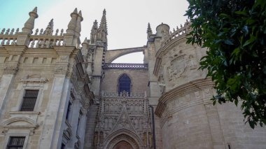Amazing Seville, one of the most beautiful cities of Europe