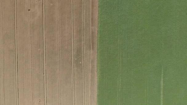 Malebné pšeničné pole. Letecký pohled
