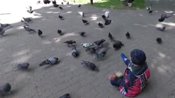 boy feeds city pigeons in the park on the sidewalk.