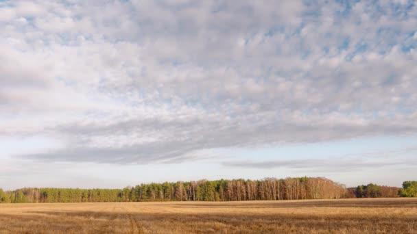 začátek jara. mraky jsou plovoucí nad polem.