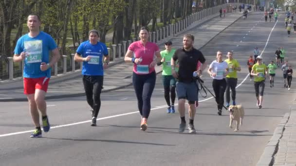 GOMEL, BELARUS - APRIL 21, 2019: ECOMARATHONE 2019 PASSED IN GOMEL