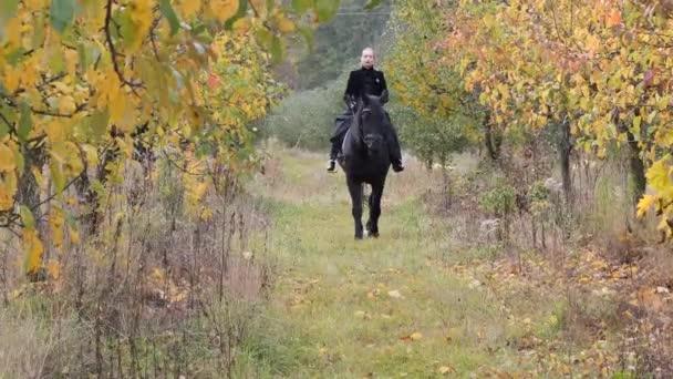 lány egy fekete ruha egy fekete ló közelkép
