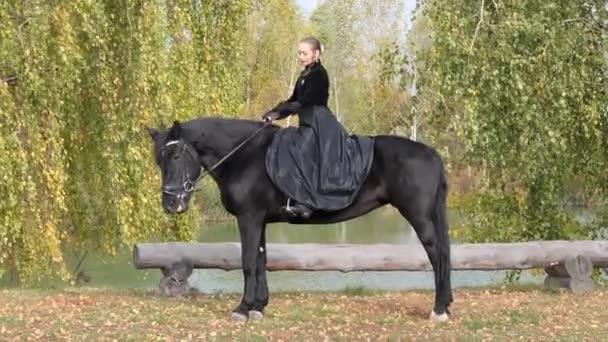 Stok hobby paard HOBBY HORSE