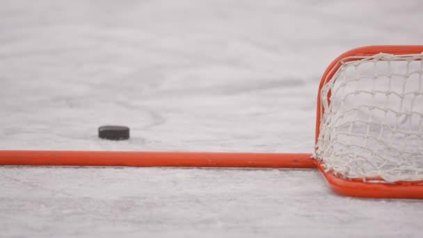 Zimní sporty. Hokej. PUK je v bráně