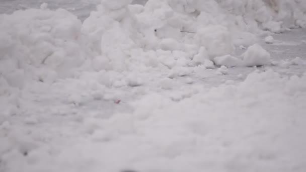 Hokejista táhne PUK ze sněhu. části těla