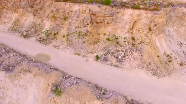 Der Hase läuft vor der Drohne weg, die ihm folgt. Luftaufnahme