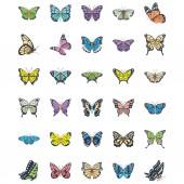 Fotografie Satz von flachen Schmetterling-Vektorsymbolen