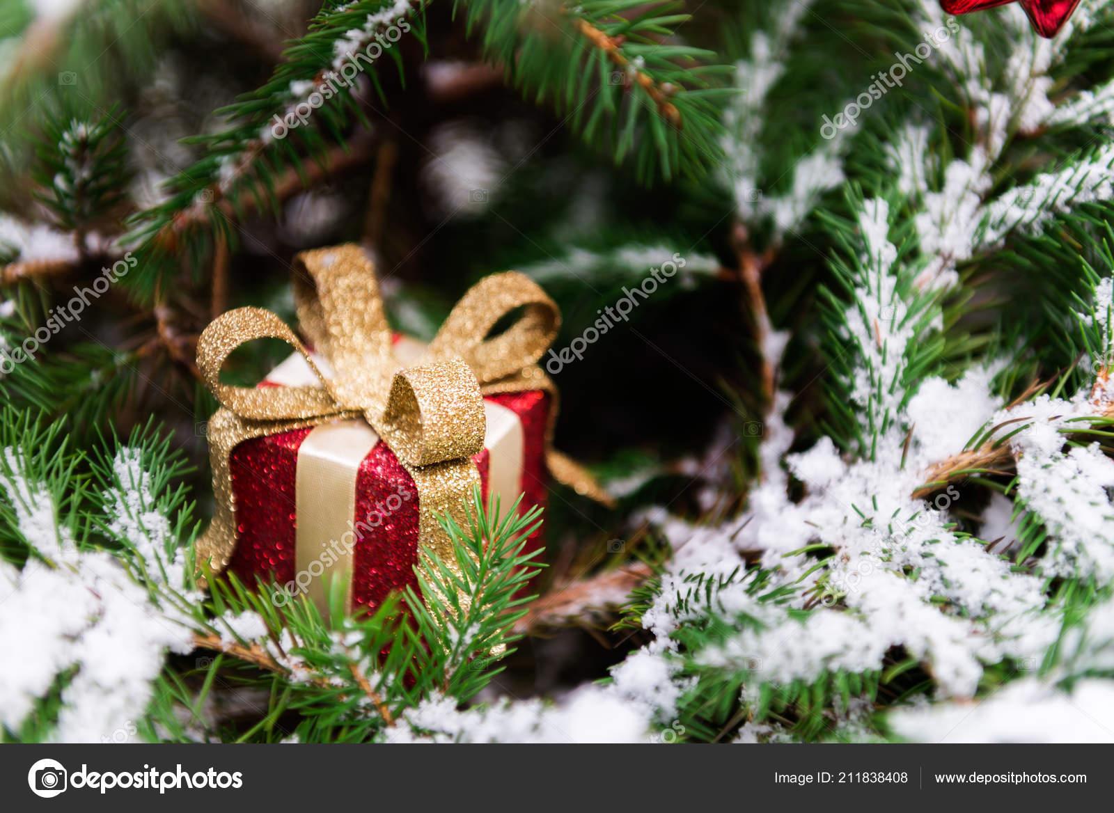 Hintergrundbild Des Naturlichen Tanne Baum Brunch Mit Schnee Bedeckt
