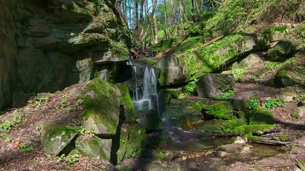 Waterfall in the forest, forest small waterfall in Creek, forest stream with waterfall, Stones and rocks covered by moss along water stream flowing through green summer forest, Moss On The Rocks Forest Stream Time Lapse, fresh water stream with water