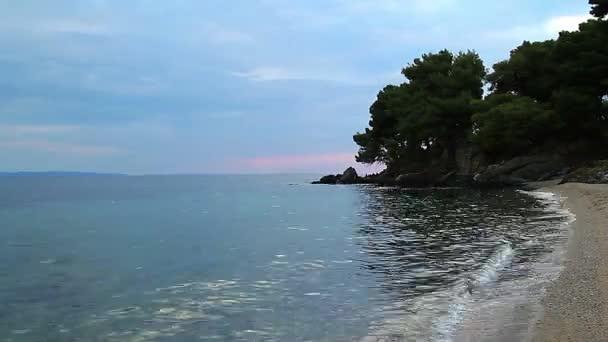 alberi di sera in riva al mare con aereo, tempo lasso di Riva del mare al tramonto, vuoto serale spiaggia, Riva del mare al tramonto, tramonto sulla spiaggia sul Mar Egeo, sulla spiaggia di sera