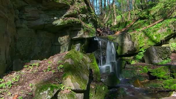 časová prodleva vodopádu v Les, lesní vodopádu v Creek, potoku s vodopád, kameny a skály vztahuje moss podél proudu vody tekoucí přes zelené letní Les, Moss na The Rocks potoku, čerstvé vody