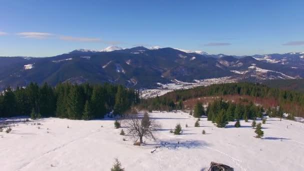 Luftaufnahme der Winterberge, Winterlandschaft, majestätischen Schneeberge, Luftaufnahme Winter Karpaten, Nadelwald in den Winterbergen