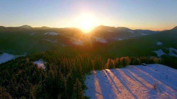 Flug über die Nadelbäume in der Morgendämmerung in den Winterbergen, Luftaufnahme von Dawn in den Winterbergen, Sonnenaufgang im Winter Karpaten, Luftaufnahme von Schnee Winterbäume bei Sonnenaufgang