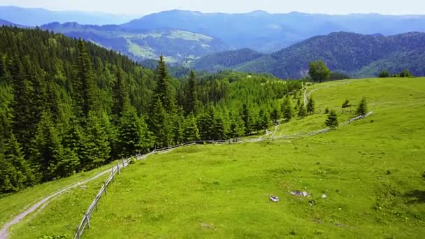 Aerial view of mountain landscape, Drone aerial flight over green meadow with road in Carpathians, path at the top of the ridge in the Carpathians, rural mountain road and meadow at sunny summer morning