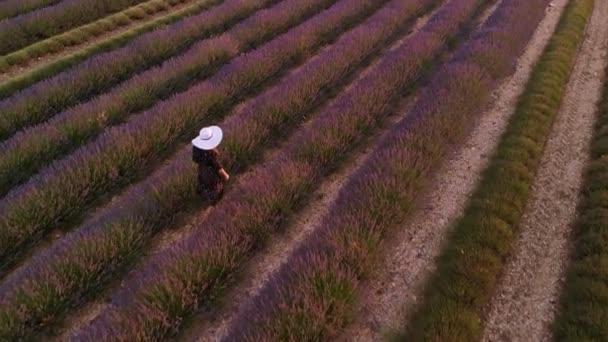 Valensole Provence Francie top anténní pohled