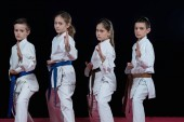 Photo Group kids Karate martial Arts