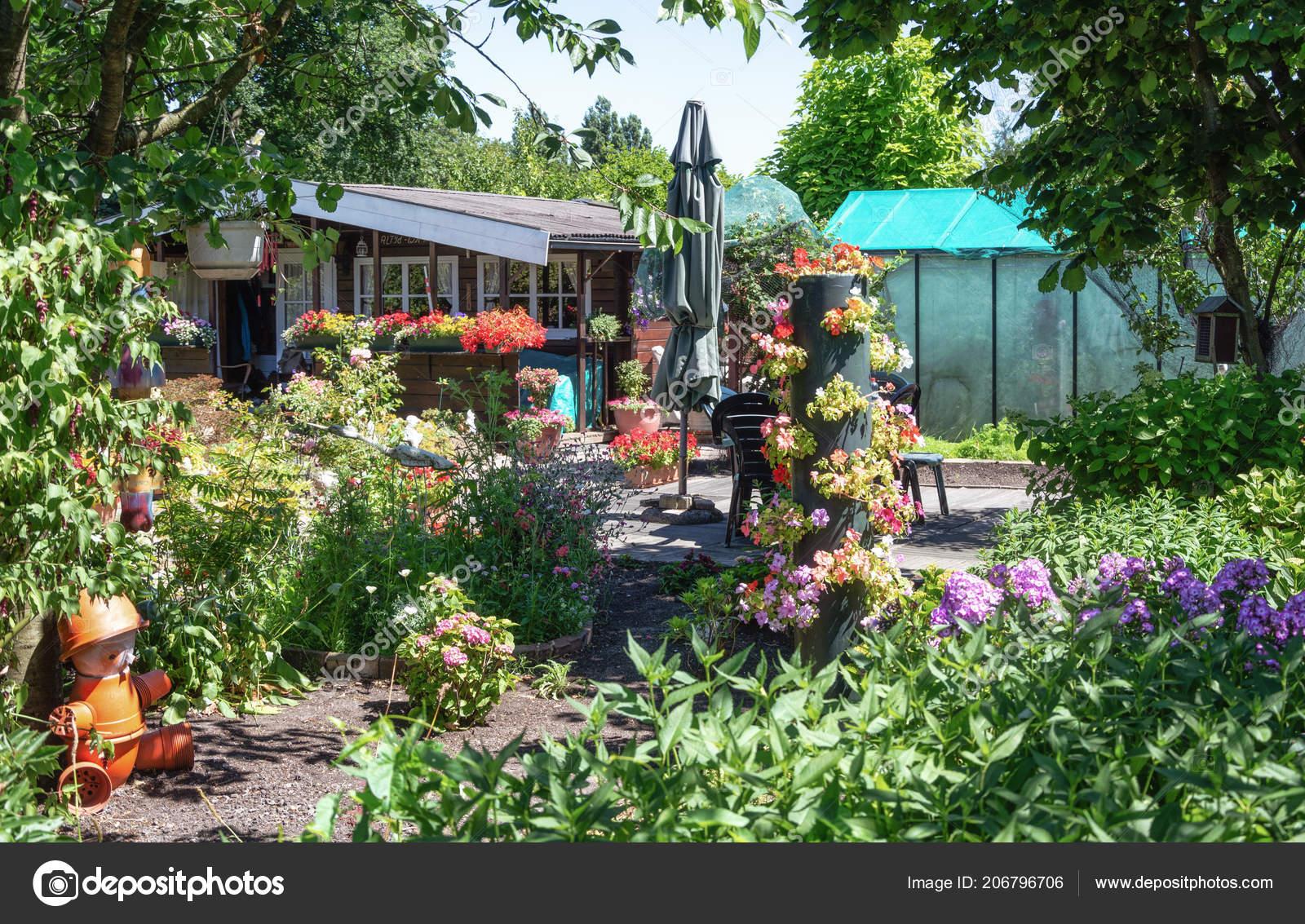 Zaandam nederland juli tuin schuur broeikasgassen omgeven