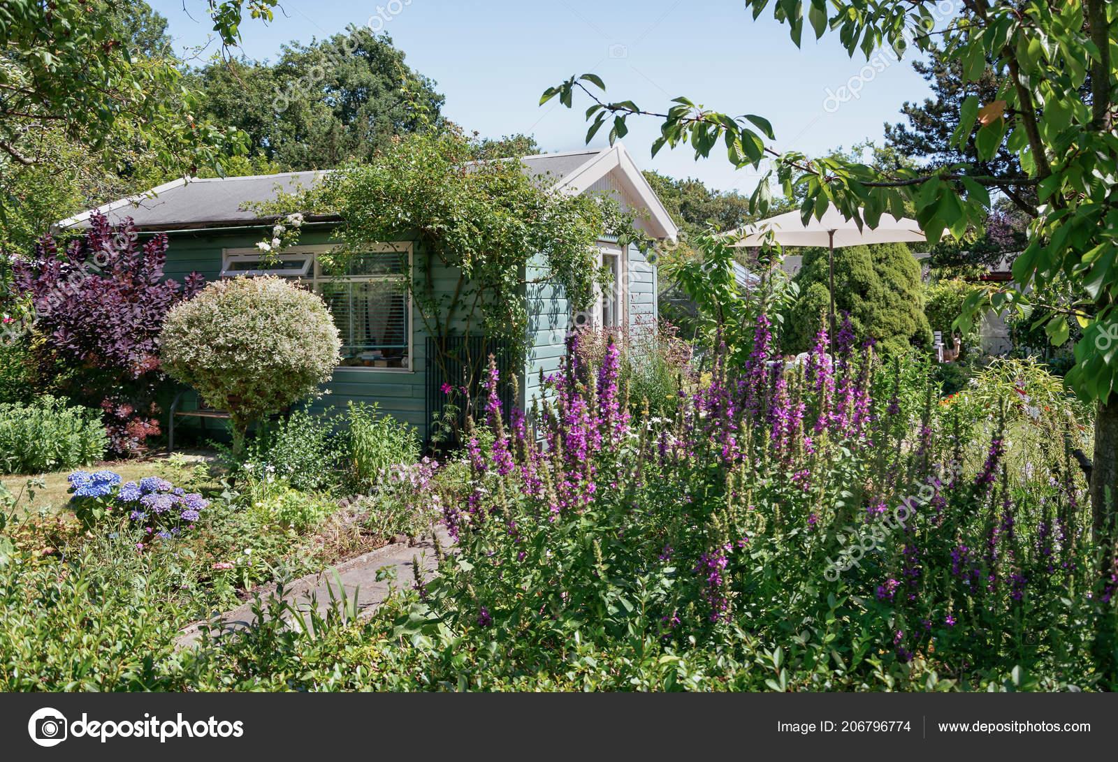 Zaandam nederland juli tuin schuur omgeven door een mooie