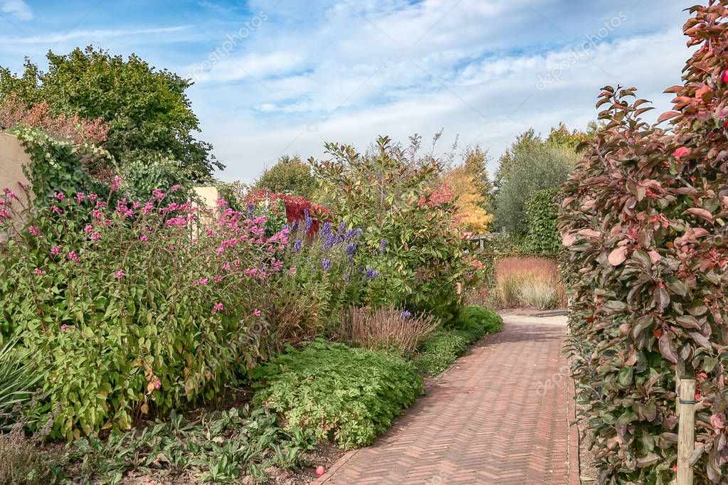 Footpath through the beautiful autumn garden somewhere in the Netherlands
