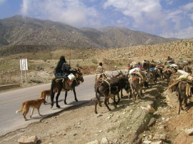 NOMADS IN IRAN IN THE LARS PROVINCE