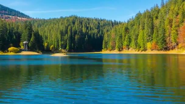 Podzimní horské jezero s barevné stromy v lese a spadané listí na vodě. Timelapse.