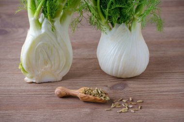 fennel bulb and scoop with seeds on wooden background