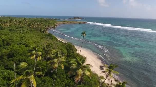 beautiful sunny beach in martinique. Palm trees and blue lagoon shot with drone