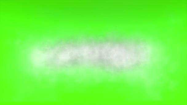 Stáhnout Green Screen 4k Animation pro váš další projekt.