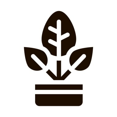 Bush Plant Leaves In Pot Vector Icon. Organic Cosmetic, Domestic Nature Component Plant Leaf Pictogram. Eco-friendly, Cruelty-free Product, Molecular Analysis Contour Illustration icon