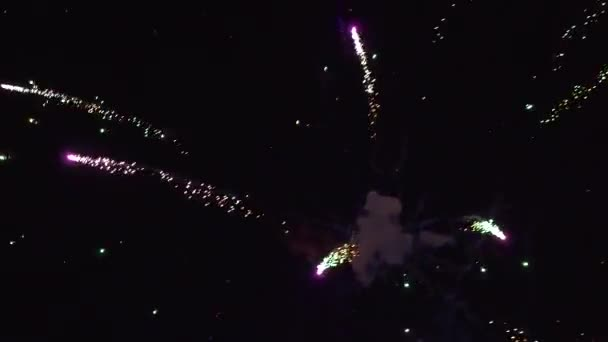 Tűzijáték szalutál éjszakai égbolt ünneplés